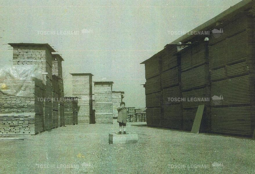 Storia toschi legnami for Legnami savignano